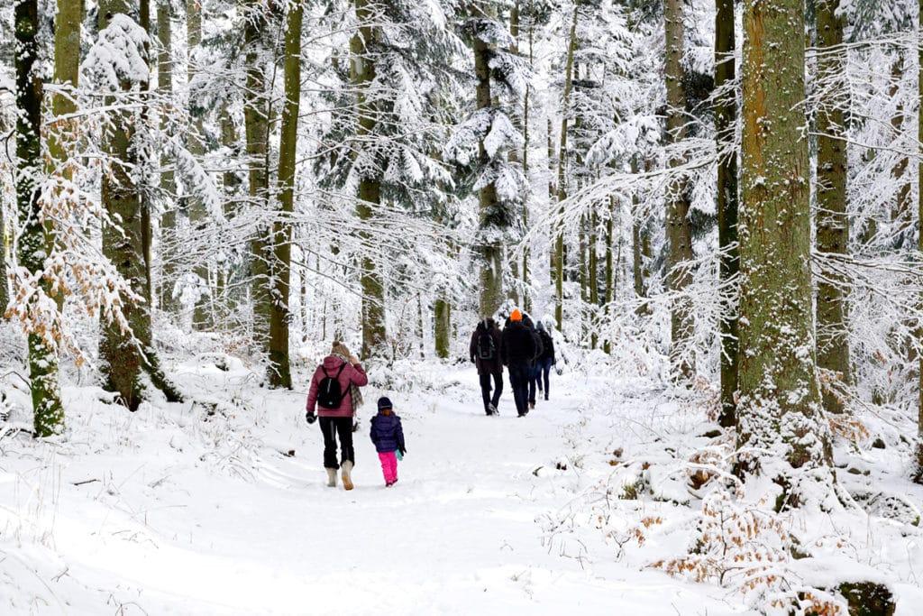 Promenade à la neige au Hohwald