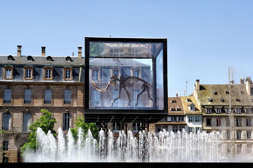 Mammouth au pied de la cathédrale de Strasbourg