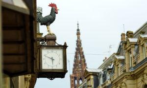 Le coq et la poule de la Rue de la Nuée Bleue