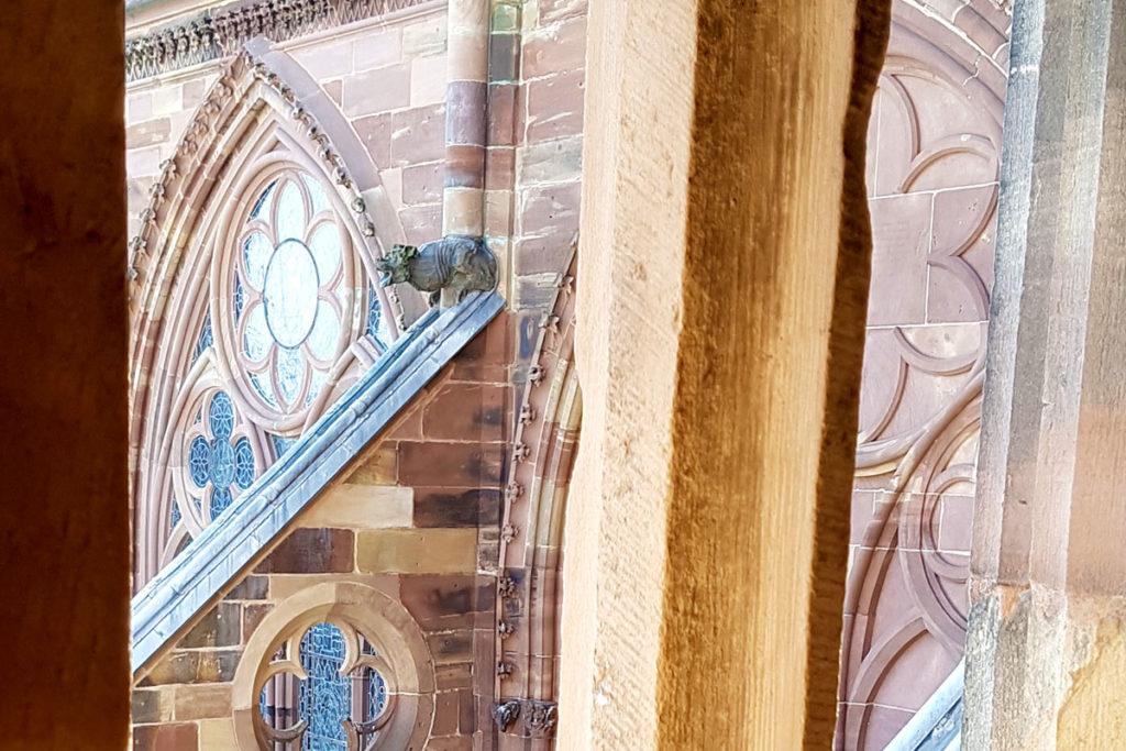 Gargouille de la Cathédrale de Strasbourg