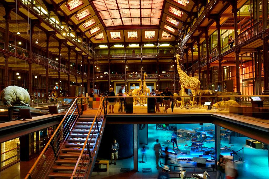 Grande Galerie de l'Evolution à Paris
