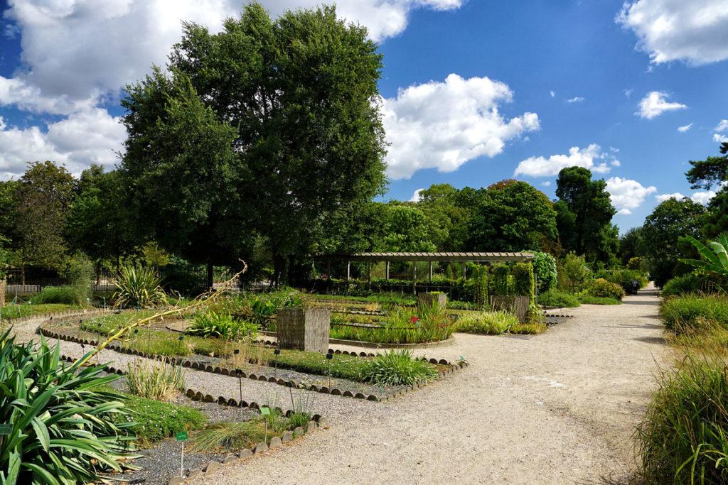 Jardin des plantes à Paris