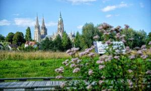Visiter Bayeux : entre nature, histoire et tradition