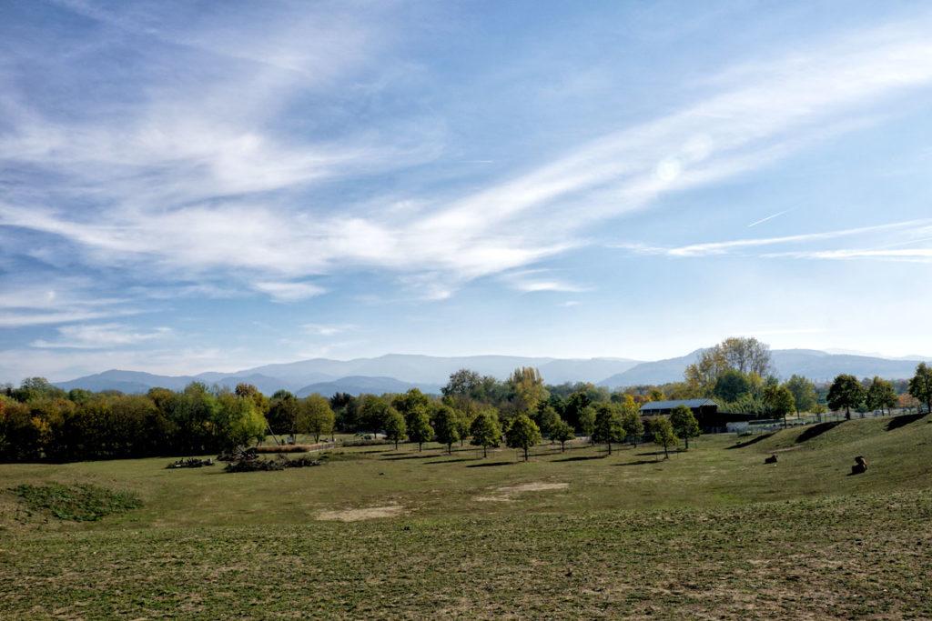 Parc animalier du Mundenhof