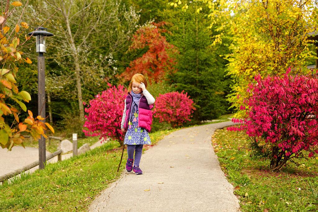 Promenade dans le Center Parcs des Trois Forêts