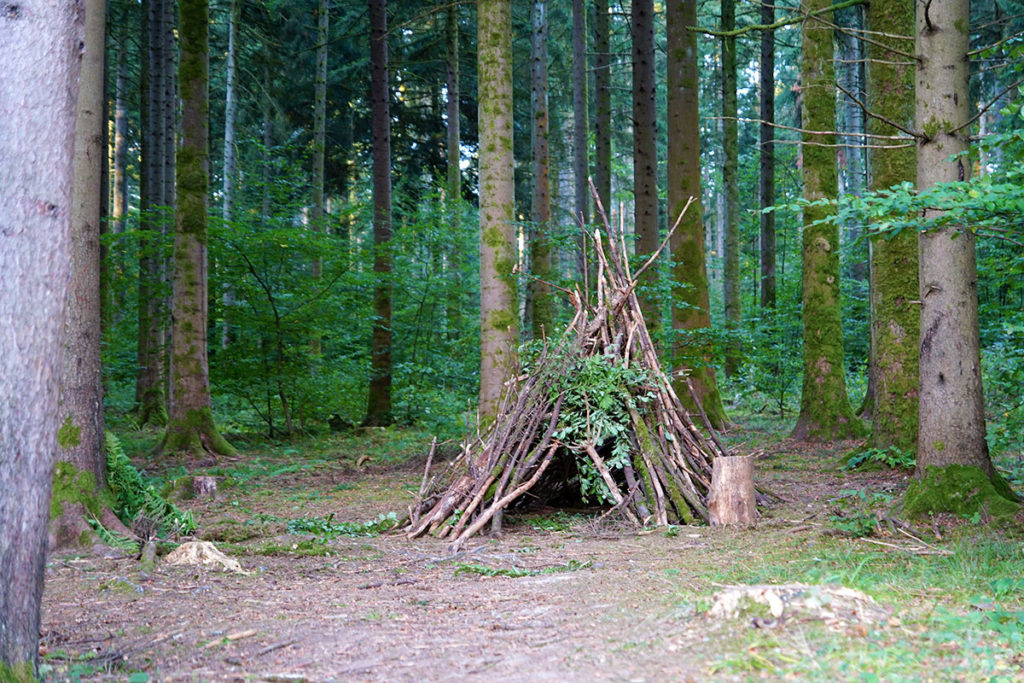 Cabane dans les bois du Center Parcs des Trois-Forêts