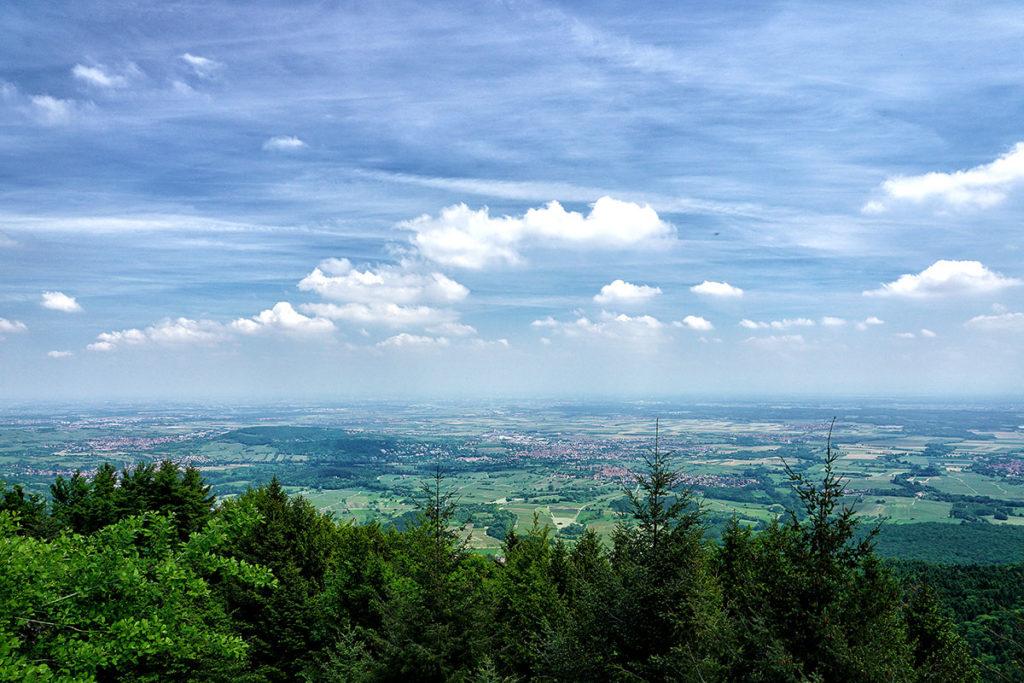 Vue sur Obernai depuis le Mont Sainte-Odile