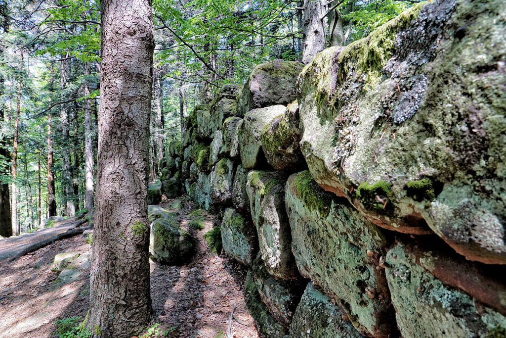 Le mur païen au Mont Sainte-Odile