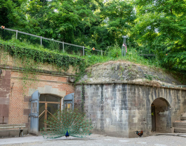 Le Parc du Fort Kléber à Wolfisheim