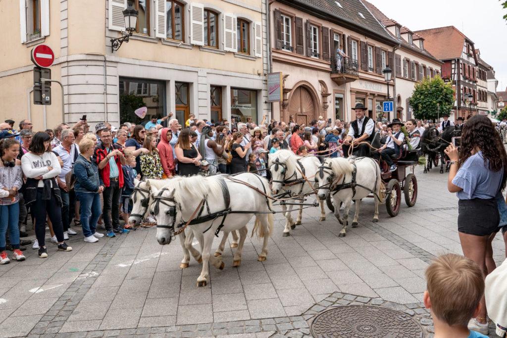 Défilé de chevaux à Wissembourg