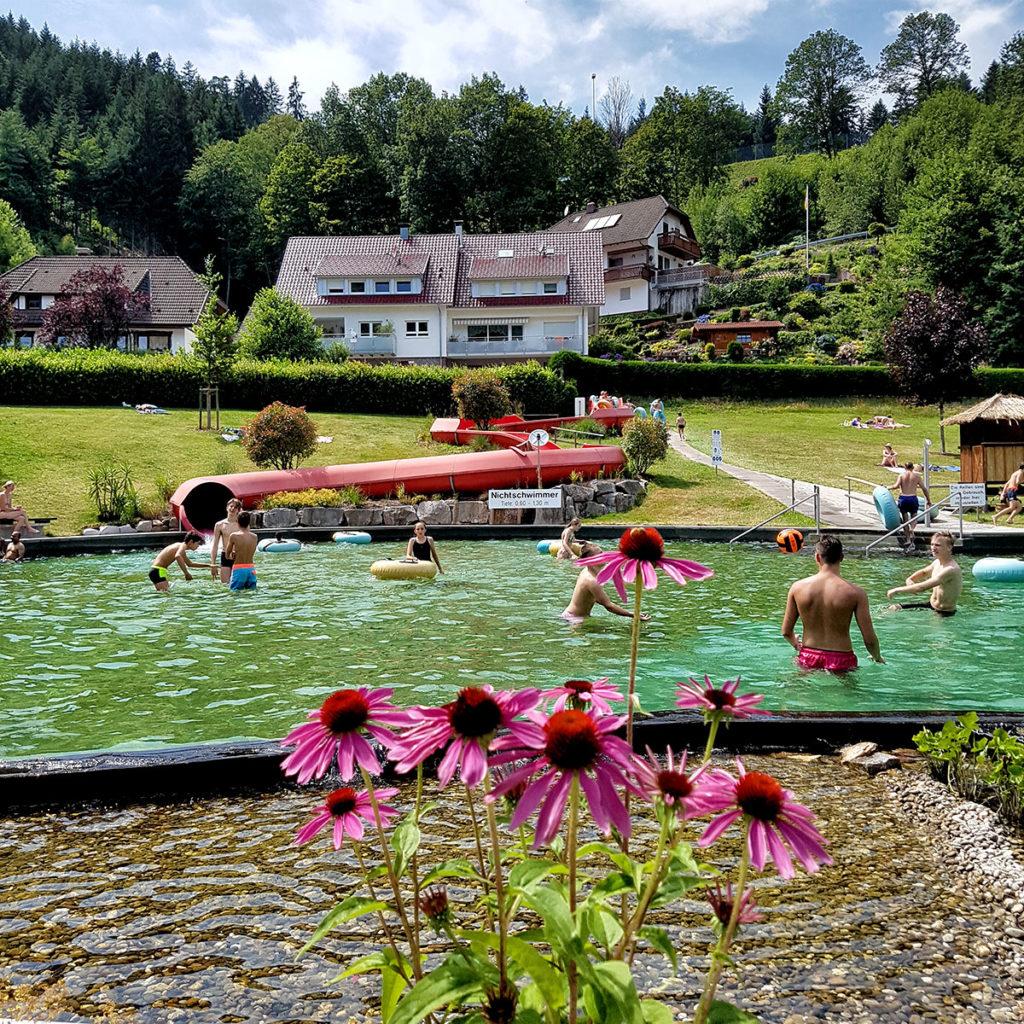 Fleurs au bord du bassin de la piscine d'Ottenhofen