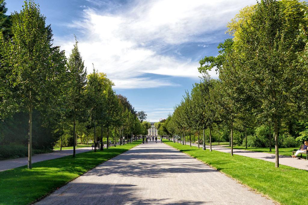 Allée du parc de l'Orangerie