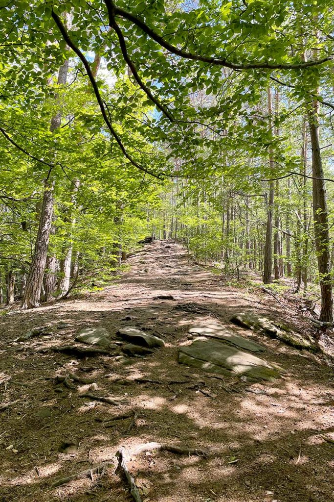 Sentier de randonnée des 4 châteaux